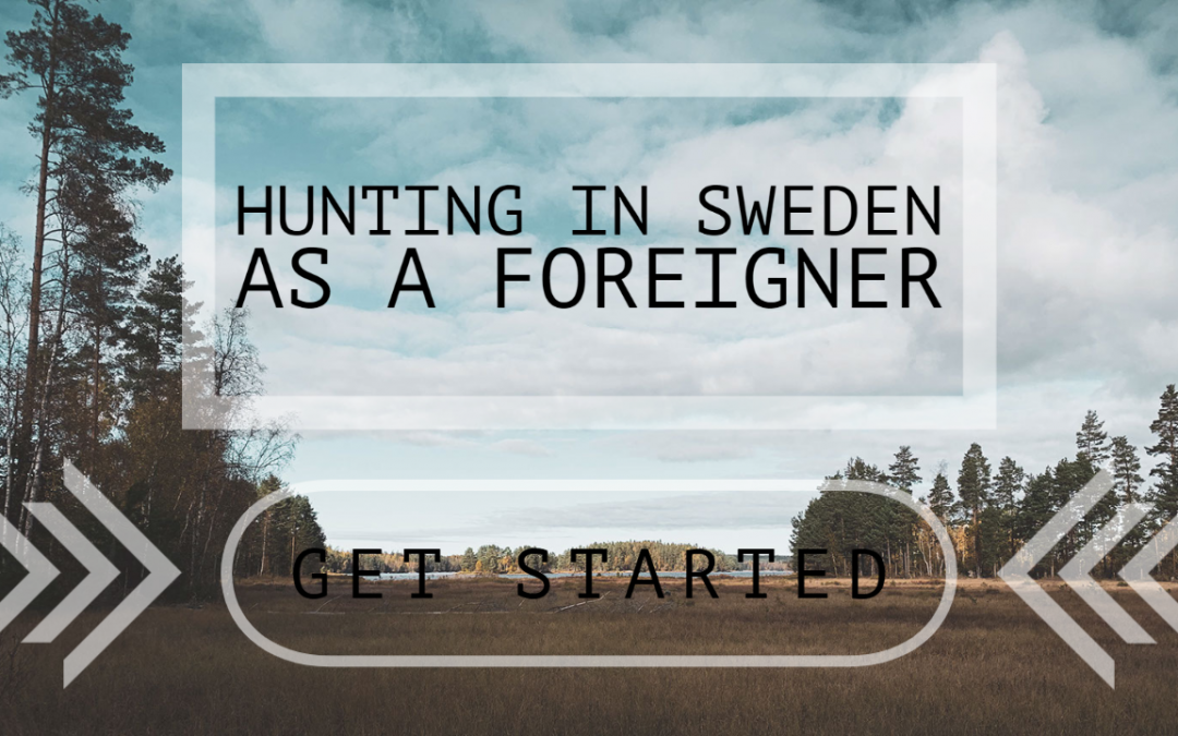 Want To Hunt In Sweden – Easy As This